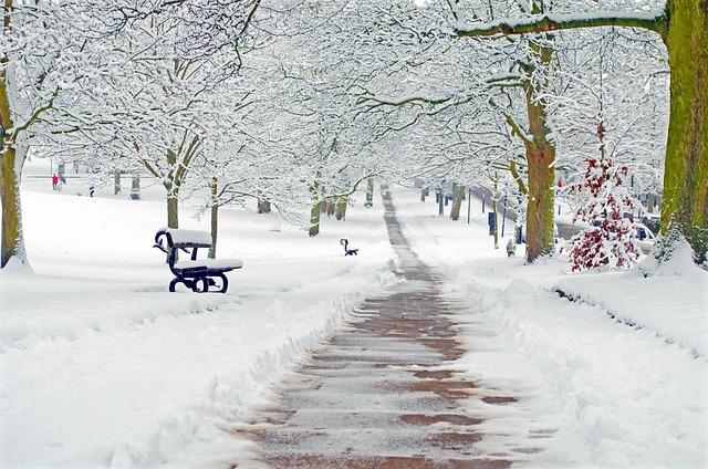 snowy-163829_640