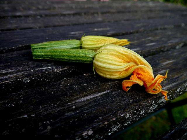 zucchini-395082_640